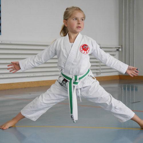 Besuch Karate